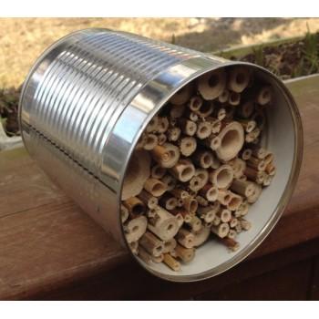 Wildbienen Bruthilfe - Witterungsgeschützt in Dose
