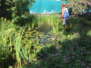 Gartenweiher Unterhalt ZH 02.06.2017