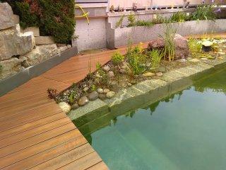 Schwimmteichbepflanzung